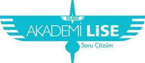 Akademi Lise Logo (1)